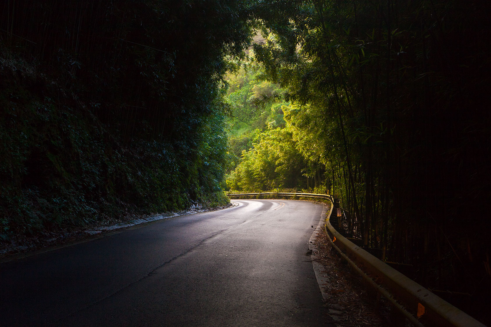 Road out of Hana